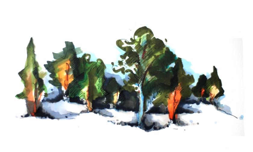 Tamagotchi plant 1